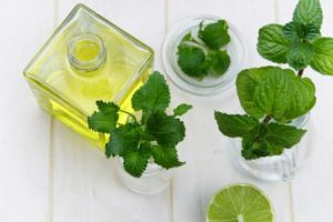 Peppermint Essential Oil Advantages