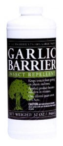 Garlic Mosquito Repellent for Yard