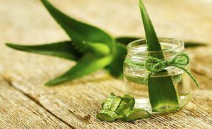 Aloe Vera to Remove a Hickey